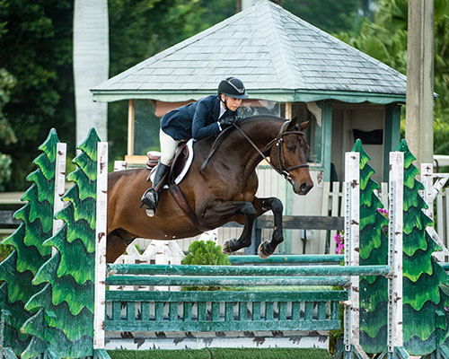 Mary Skey Equestrian Coach Riding Instructor Hunter Jumper