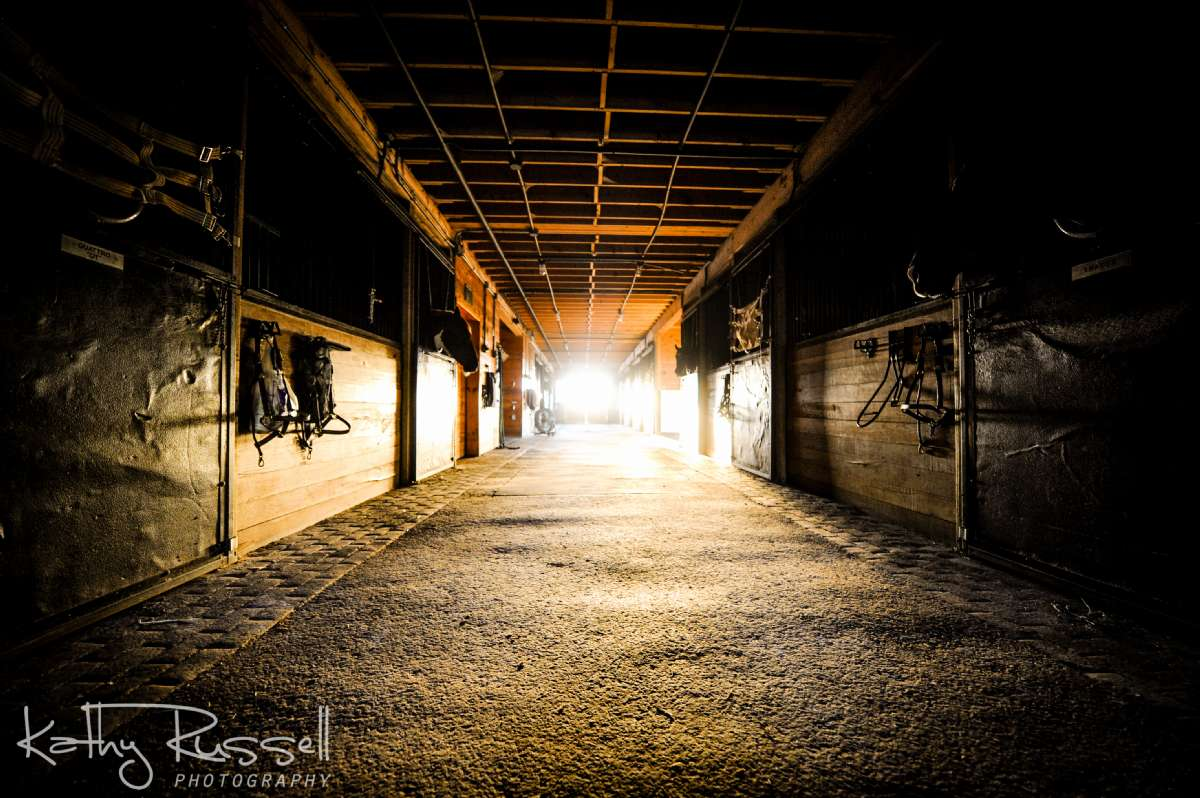 Spacious and well-lit aisles ensure a safe environment for riders and horses.